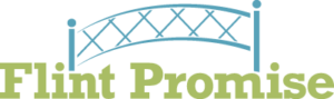 Image result for flint promise